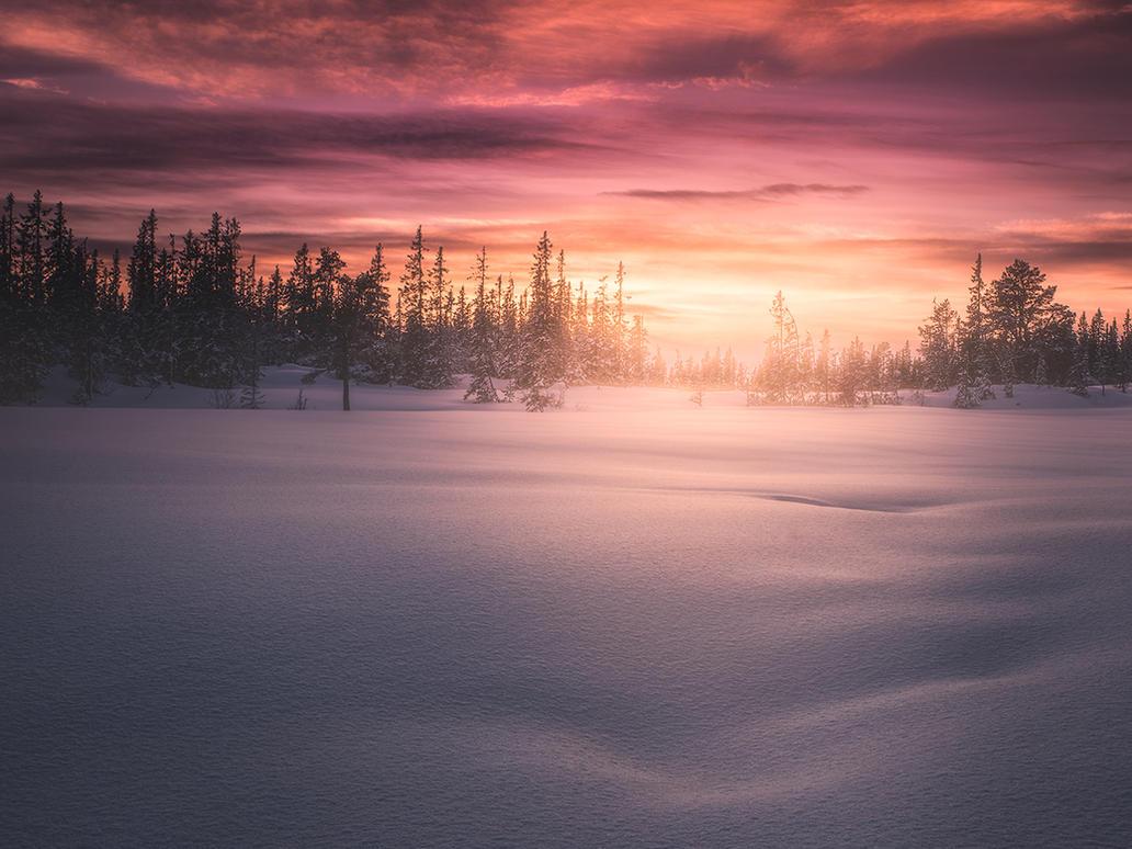 Winter light by streamweb