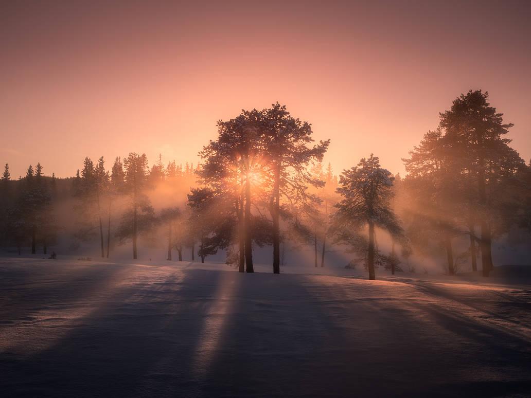 Sunset through the mist by streamweb