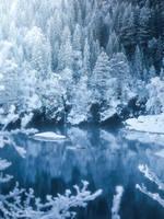 Frozen wonderland by streamweb