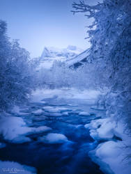 Frozen wonderland by streamweb
