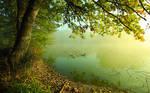 breath of morning