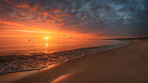 Stogi sunrise II