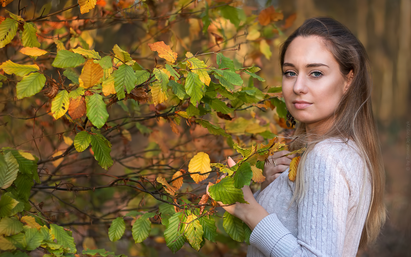 Autumn nostalgy
