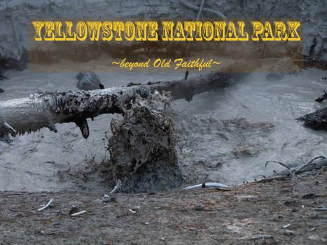 Yellowstone - Beyond Old Faithful