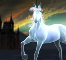 Sunset Unicorn
