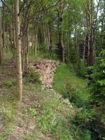 Abandoned Wall by kittenwylde