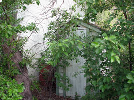 Overgrown Outhouse by kittenwylde