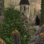 Forest Folly