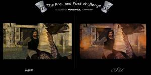 Pre-Post Challenge #1 by kittenwylde
