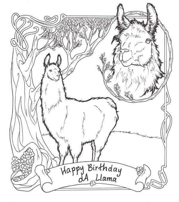 dA llama birthday contest by ReQuay