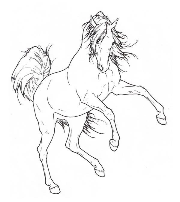 Simple Horse Lineart : Arabian rearing lineart by requay on deviantart