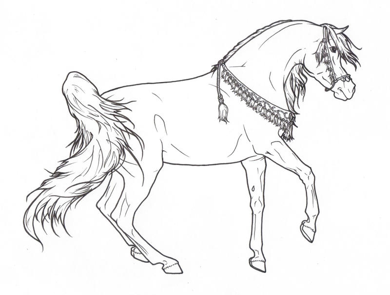 Arabian Horse with Necklace - Lineart by ReQuay on DeviantArt