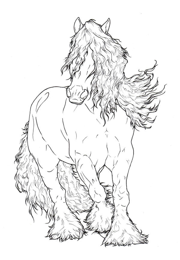 Gypsy Vanner LineArt By ReQuay On DeviantArt