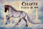 Calixte ID #1239 - DECEASED