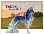 !O4 Triton