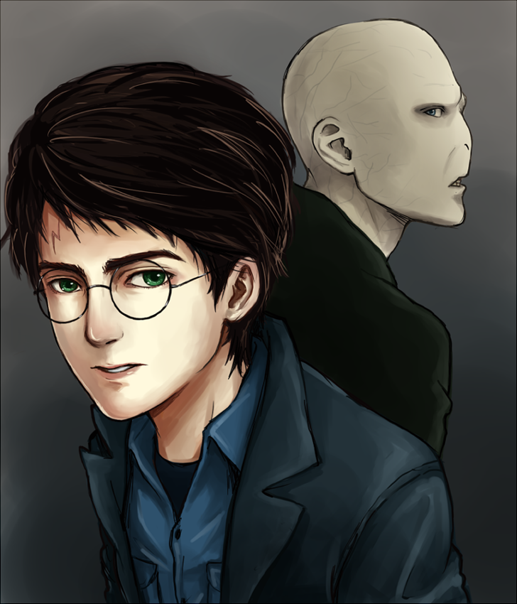 Harry Potter and Voldemort PNG