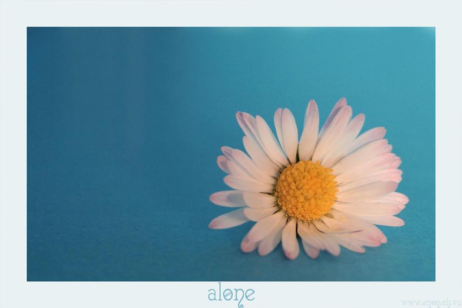 alone by en-on