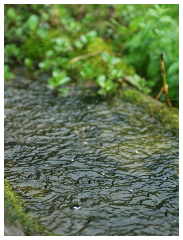water is life by en-on