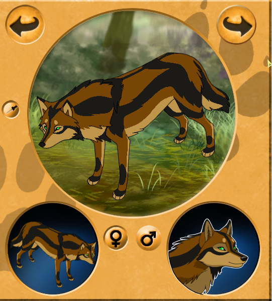 Another New Wolf Character