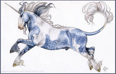 Dapple Blue Unicorn