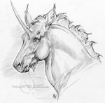 Unicorn Pencil Portrait