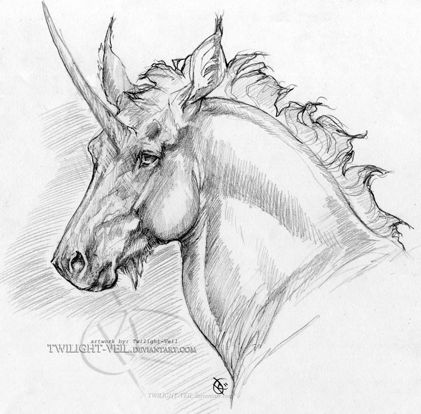 Unicorn pencil portrait by twilight