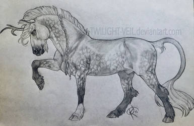 Fire Tail In Pencil