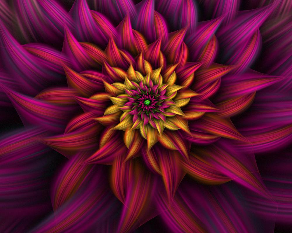 Spiral Flower 9 by johnnybg
