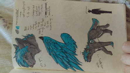 Widder (Veed-ah) updated reference