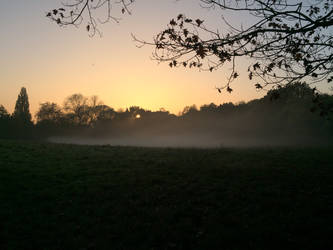Hampstead Heath in the mist by kathrynthomas