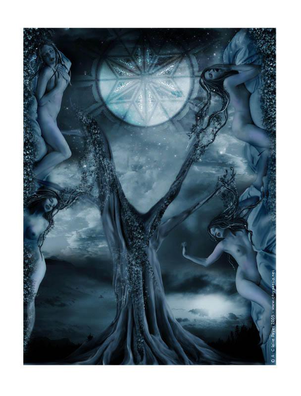 Midsummer Night's Dream by Eireen