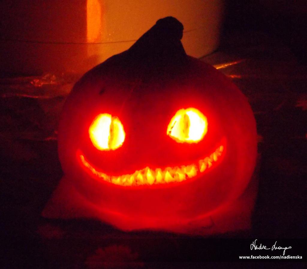 Cheshire Cat (Tim Burton\'s Alice in Wonderland) by NadienSka on ...