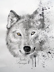 Save the Wolf