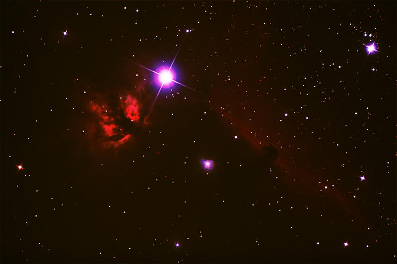Horse Head and Flame nebulas by phrostie