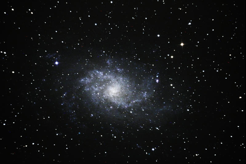 M33 - The Triangulum Galaxy by phrostie