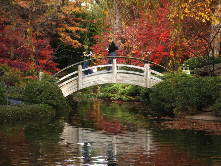 Botanical Gardens, The Bridge3 by phrostie