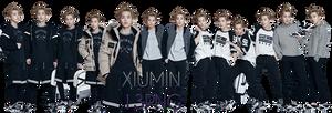 EXO Xiumin PNG Pack {SKECHERS} by kamjong-kai
