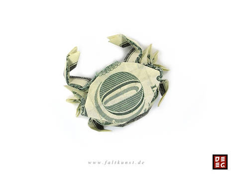 Dollar Bill Crab