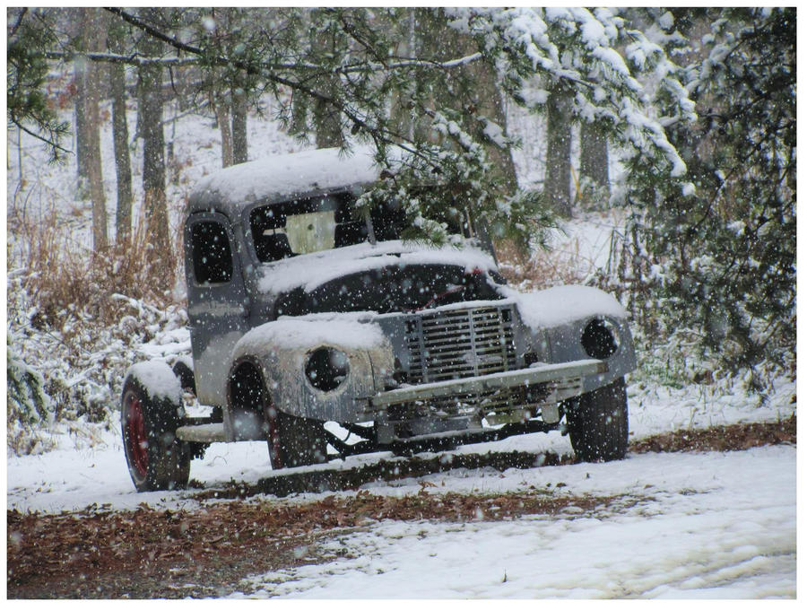 Winternational by CrystalMarineGallery