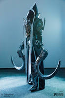 Diablo III Reaper of Souls Cosplay by AiDerathar