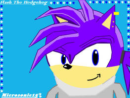 Flash The Hedgehog ID by Silverfur15