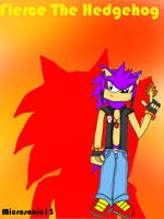 Fierce The Hedgehog 2012 by Silverfur15