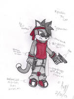 NFC: Kyochin The Cat by Silverfur15