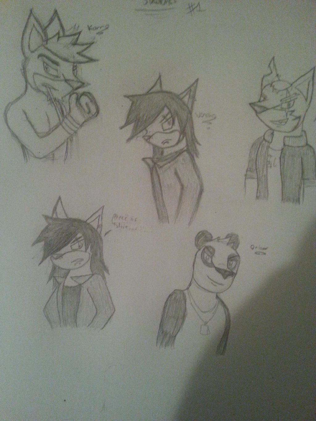 Character Sketches #1 by Silverfur15