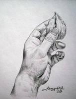 My Hand Holding Winter Cherry by Musyupick