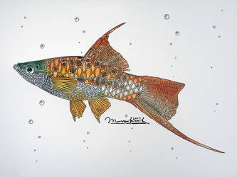 Swardtail by Musyupick