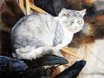 Fluffy grey cat on charred logs by Musyupick