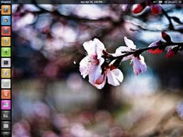 elementary + Ubuntu desktop by ghogaru