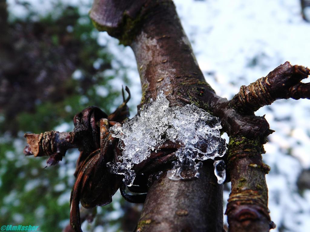 melting snow by IamNasher