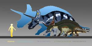 Ceratopsian Scale
